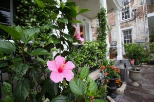 Courtyard | Outdoor Dining |Garden | Jacuzzi | New Orleans | Fleur De Lis Mansion | Bed and Breakfast